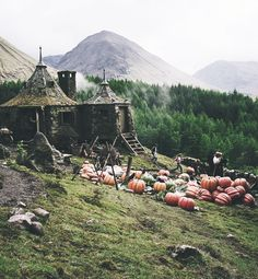 @Julia Lane ONLY. I walk into Hagrids tiny hut. I plop down on the nearest stool. I pout. Detention stinks. ( Julia u can be Hagrid:)