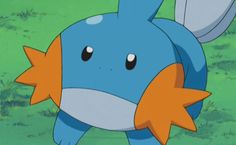We Know Which Starter Pokémon You Chose I got mudkip....which is my fav watet starter ever...
