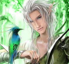 Elfi (Elves)
