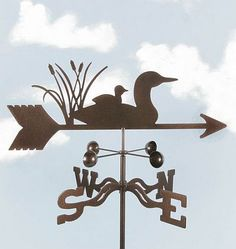 EZ Loon With Baby Weathervane Package