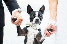 20 bodas en las que las mascotas fueron un invitado más (FOTOS)
