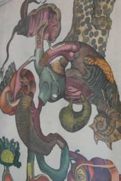 Jan Svankmajer. Natural History, coloured etching. University of Brighton Gallery.