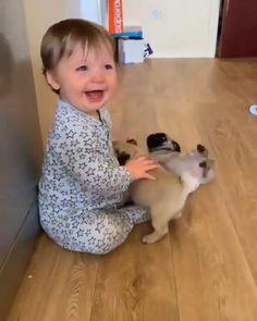 Baby Animals Super Cute, Cute Baby Dogs, Cute Little Animals, Cute Puppies, Cute Animal Photos, Cute Animal Videos, Funny Animal Pictures, Cute Funny Baby Videos, Cute Funny Babies