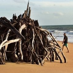 After the storms in June, we found this on the beach.. Huge!