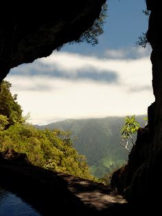 Levada Cave by Madeira Islands