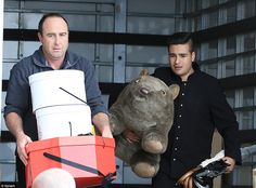 Handle with care: Staff carry the Royal couple's gifts in Sydney, including the giant cuddly wombat given to Prince George by Australia's Governor General.