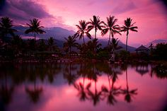 sunsets <3