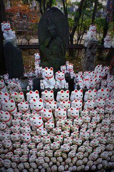 Gotoku-ji Temple, Setagaya, Tokyo, Japan I really need to get me a lucky cat