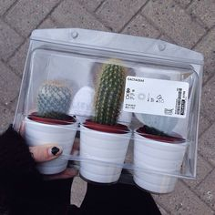 i went to ikea today hoping to buy these but NO ThEY HaD sOLd OUt iN EVERY COLOUR POT LIKE WHAT