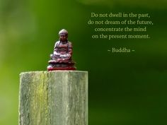"""Do not dwell in the past, do not dream of the future, concentrate the mind on the present moment."" ~ Buddha"