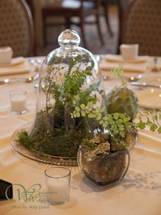 Natural and Organic Terrarium Centerpiece at the Lake of Isles