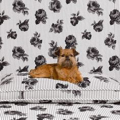 Floral Mattress Bed by Mr Dog New York