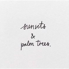 Palm trees | jkawaters