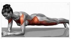 Oggi voglio parlarvi dei grandi risultati fisici e salutari che si possono ottenere praticando l' esercizio chiamato : il Plank Il plank è ottimo soprattut
