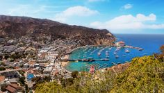 CATALINA ISLAND - SIGHTSEEING - Catalina Island Hotels, Packages, Tours | Avalon & Two Harbors | Visit Catalina Island