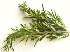 Rosemary Oil     Our ancestors to keep hair soft and healthy used Rosemary oil. Before washing your hair, use rosemary oil and almond oil as a conditioner.