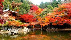 Daigo-ji, Kyoto, Japão - Parece uma pintura, mas não é. O templo budista é composto por um tangõ e um pagode de cinco andares. A paisagem vermelha e laranja só ajuda a tornar o local ainda mais bonito.