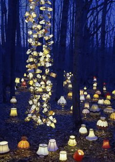 Have lights leading a forest path to an open field for the reception party! SO PRETTY!