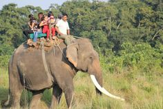 Elephant ride is a pure fun. For Elephant Safari in Nepal(A complete guide), there are two popular destination. Chitwan ( Sauraha) and Bardia National Park.