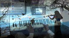 Vangelis - Hymn - played Live on Tyros4