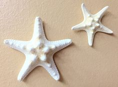 A personal favorite from my Etsy shop https://www.etsy.com/listing/224876178/knobby-starfish-wall-decoration-wedding