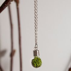 a terrarium on a necklace? couldn't be more perfect.