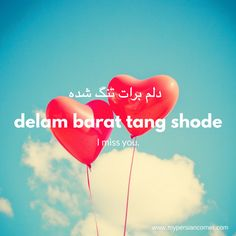 Persian phrases | Farsi phrases | Persian expression | I miss you | vocabulary | language