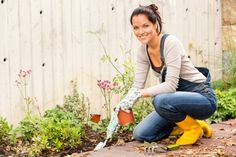 How To Get Your Garden Ready For The Winter Months