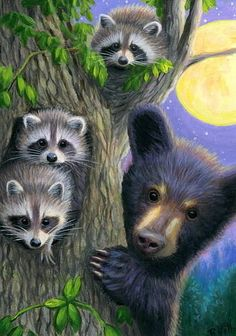 ACEO original raccoon bear cub moon tree summer wildlife painting art  | eBay