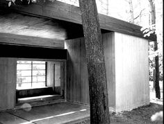 Rooms in the Forest: Jan Szpakowicz's House