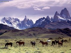 Andes Mountains Patagonia Argentina