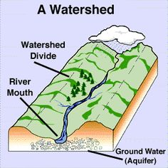 Watershed Management : Watershed management, in its basic form means handling upstream activities and sources smartly so that downstream continues to be healthy.