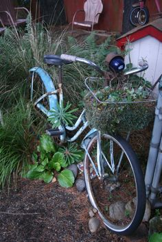 I love this... Looking for an old, fat-tired bike... not an old, fat, tired bike!