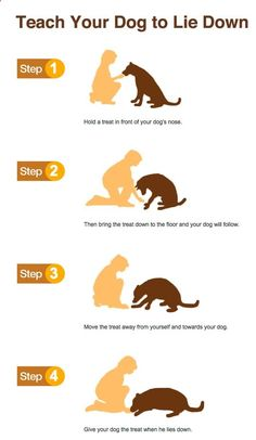 Wicked 45  Puppy Training Tips meowlogy.com/... Puppies need naps the same as babies. Quite a few of our past puppies have created wonderful service and therapy dogs too. Possessing a new puppy is a rather intriguing and enjoyable experience for the entire family, therefore do not neglect to take pleasure in the companionship of your new pet. You may now receive a new puppy without all those new puppy difficulties.