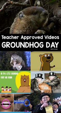 Groundhog Day Videos for Kids - Teacher approved list of videos for preschool, kindergarten, and first grade.
