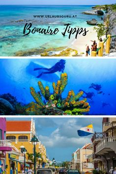 Maybe One Day, Travel Around, Strand, Vacation, Poster, Painting, Caribbean Cruise, Islands, Vacation Travel