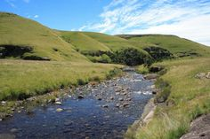 River at Cobham in the Underberg