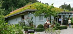 green roof innovator – zinco group - The Alternative Consumer