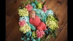 #wildphotography #iowa #newborn #photographer   Baby girl flowers  www.wildphotographybytori.com Wild Photography, Image Photography, Newborn Photographer, Iowa, Flowers, Baby, Fashion, Moda, Fashion Styles