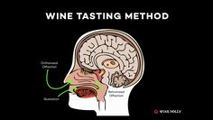 The Wine Tasting method will improve your ability to blind taste wine. Learn it! #WineFolly #Wine #WineTasting #HowTo #Video