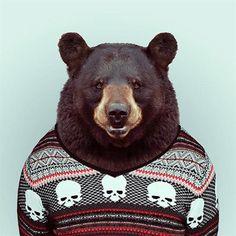 Fashion-Zoo-Animals-2