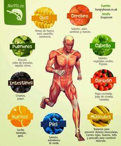 Alimentos y repercusiones en el cuerpo humano. Alimentos beneficiosos.