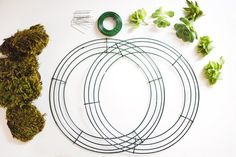 How To Make a Succulent Wreath Apartment Therapy Tutorial | Apartment Therapy
