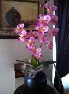 orquideas color rosa