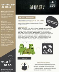 """Mold and """"Moldy"""" by Bulletproof"""