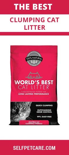 Ready to know about the best clumping cat litter of this world? This article is going to help you to select top rated clumping cat litter of this world Best Cat Litter, Natural World, Cool Cats, Things To Sell
