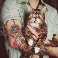 Cats and tattoos. <3 Lil Bub!