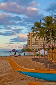Trippy.com's travel enthusiasts share their insider tips and pictures about Waikiki