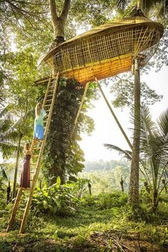 Ubud, Bali, Indonesia - February 4, 2014: Two women climbing up ladder to a bamboo tree house