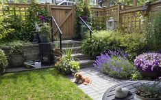 Small city garden design tips - add height with trellis